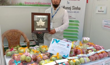 Young entrepreneur sets up online supply chain to redefine Kashmiri apple sale